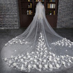 Velo de novia Diosa vestido de novia Otoño Encaje Cola Catedral Moderno