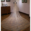 Champagne bling velo de novia novia velo de novia lujoso velo largo