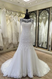 Vestido de novia Otoño Encaje Mangas Illusion Corte-A Natural Iglesia