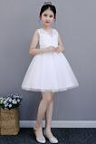 Vestido niña ceremonia Verano Falta Capa de encaje Joya tul Apliques