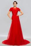 Vestido de noche Elegante Capa de encaje Otoño Arco Acentuado Natural