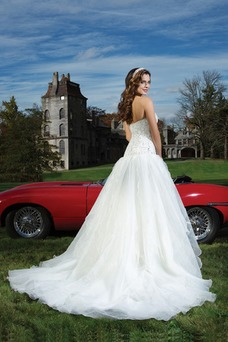 Vestido de novia Sala Escote Corazón Corte princesa Cremallera Espectaculares