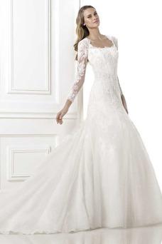 Vestido de novia Manga larga Queen Anne Cola Capilla tul Cremallera