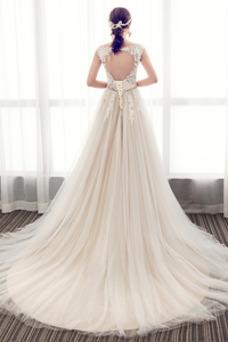Vestido de novia Elegante Cola Barriba Verano Escote en V Capa de encaje