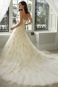 Vestido de novia Espectaculares tul Apliques Cola Catedral Escote Corazón
