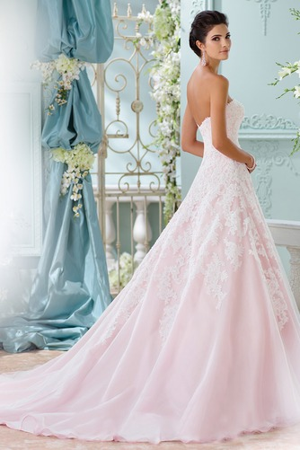 Vestido de novia Sin tirantes Cola Capilla Corte-A Iglesia Encaje Formal - Página 2