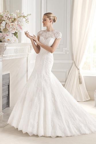 Vestido de novia largo Encaje Corte Sirena Manga tapada Sala Encaje - Página 1